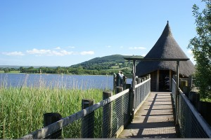 Crannog & boardwalk ©