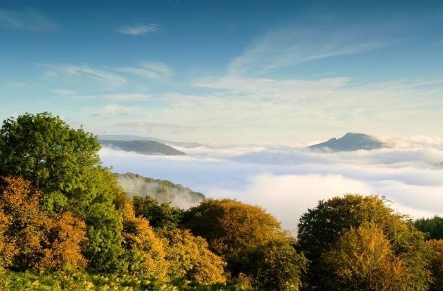 Awake holly mountain by Simon Powell ©
