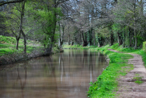 Brecon and Monmouthsire Canal © Kevin Walker