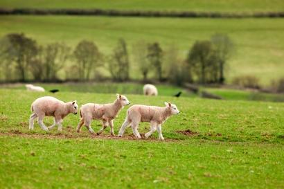 Visit Wales ©