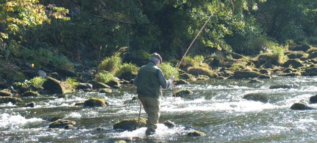 Fishing at Gliffaes Hotel ©