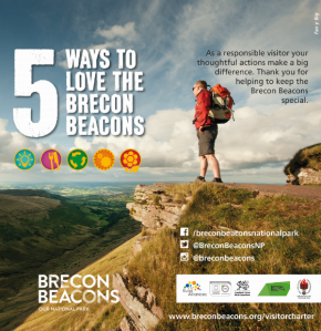 5 ways to love the BB